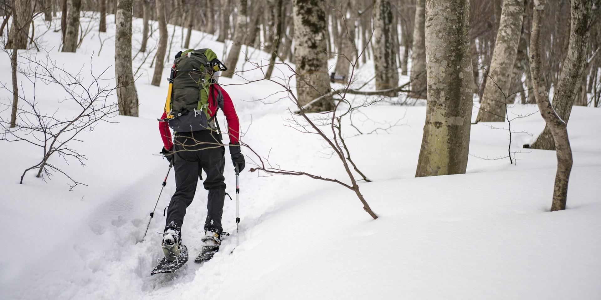 Les bénéfices santé de la randonnée en raquettes