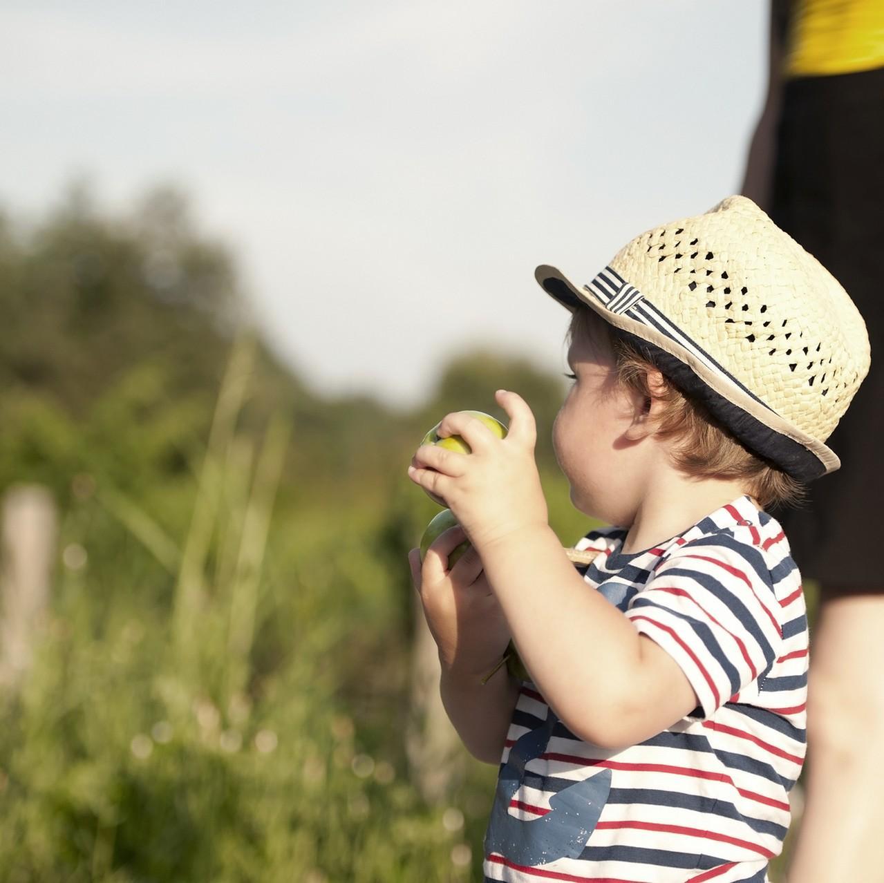 Vacances d'été : comment rester actif à la campagne ?