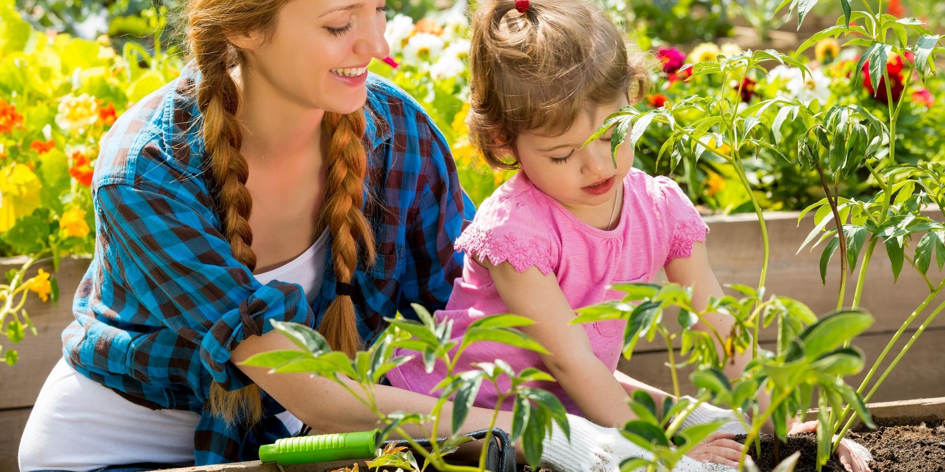 Jardiner avec un enfant